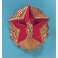 ČSPO - Svaz Požární Ochrany odznak 28x24 mm